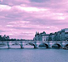 Parisian Mosaic - Piece 9 - The Pont Neuf by Igor Shrayer
