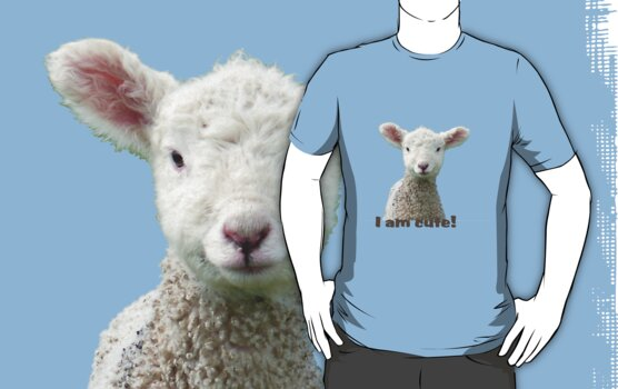 I am Cute - Kids T-Shirt - Lamb - NZ - Southland by AndreaEL