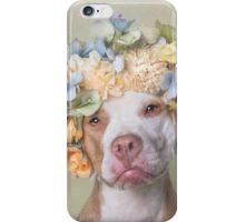 Flower Power, Lola iPhone Case/Skin