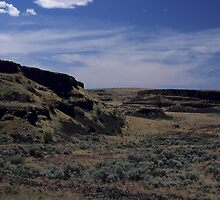Washington Desert Land by OneRudeDawg