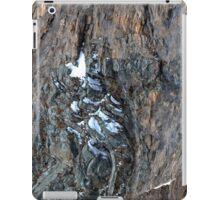 Winter on Kitzsteinhorn 88 iPad Case/Skin