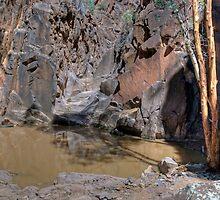 Sacred Canyon, Flinders Ranges, South Australia  by Adrian Paul