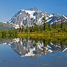 Mt. Shuksan, Picture Lake (1) (North Cascades National Park) by Barb White