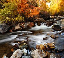 American Fork Canyon - Autumn River by Ryan Houston