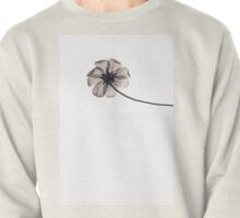 Purity Pullover