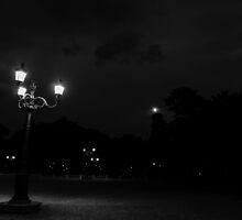 Rome, Villa Borghese at night  by Andrea Mazzocchetti