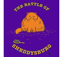 The Battle of Sheddysburg Cat Photographic Print