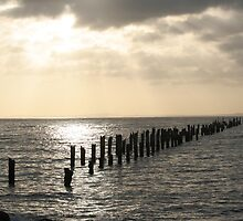 The Remains of Bridport Pier. by Tizimagen