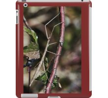 Stick insect Phasme story 11   (c)(t) by Olao-Olavia / Okaio Créations fz 1000 iPad Case/Skin
