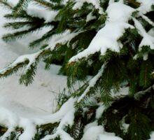 Tree in the Snow Sticker