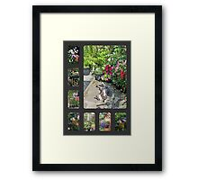 My Patio and Small Garden Framed Print