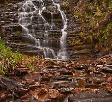 Margaret Falls by mspfoto