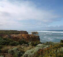 Great Ocean Road, Victoria  by Virginia McGowan