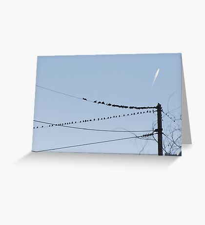 Birds On A Wire - Perception If you like, please purchase, try a cell phone cover thanks Greeting Card
