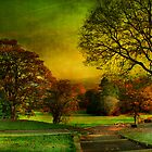Oak Hill Park in Autumn  by Irene  Burdell
