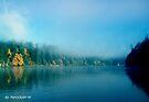Puget Sound Morning Fog - Blank Greeting Card by Marcia Rubin