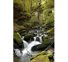 Healey Dell, Rochdale Photographic Print