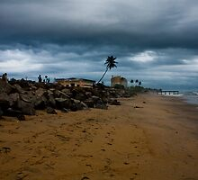 Monsoon Glory by athulkrishnan