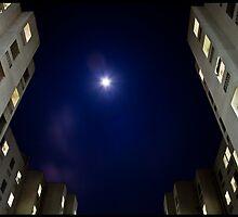 Moonlit Night by athulkrishnan