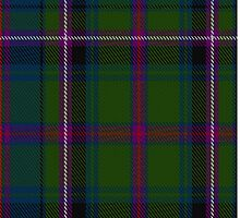 02850 Empire Golf Check Tartan  by Detnecs2013