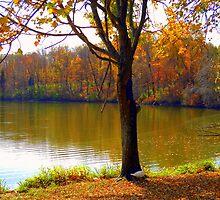 Duck By The Tree by debbiedoda