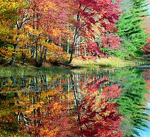 fall watercolor by TomSpencer