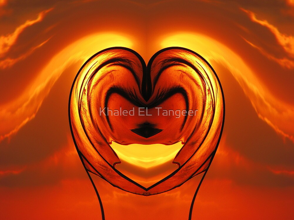 THE MIRROR OF LOVE by Khaled EL Tangeer