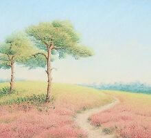 Pines, Evening Sun, New Forest by Fiona Cross