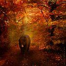 An Autumn Stroll by secondnatureart