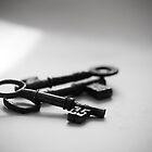 Old Keys by pixel8it