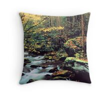 MOUNTAIN STREAM,AUTUMN Throw Pillow