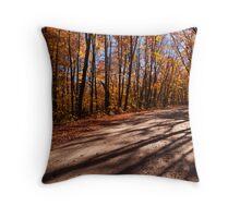 Fall Road Throw Pillow