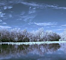 Infrared Reflections by Shane Jones