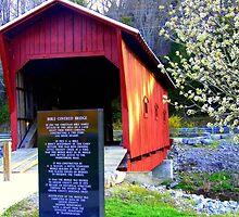 Bible Bridge by lynell