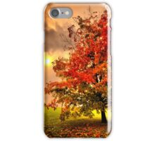 Red Maple tree  iPhone Case/Skin