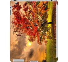 Red Maple tree  iPad Case/Skin