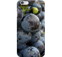 Fit to Burst  iPhone Case/Skin