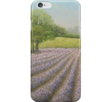 Mayfield Lavender in Bloom, Carshalton, Surrey iPhone Case/Skin