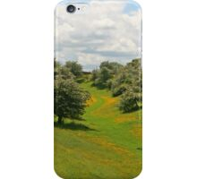 On Broadway Hill iPhone Case/Skin