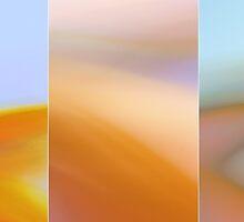 Feeling Orange But Sometimes ... by Tanja Katharina Klesse