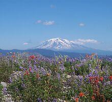Mount Adams in late Summer by Dave Davis