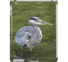 About To Strike iPad Case/Skin