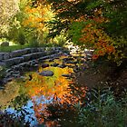 Autumn  Reflections on the Don by MarianBendeth