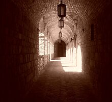 Castle Passage in Sepia - Napa Valley, California by Jaime Rice