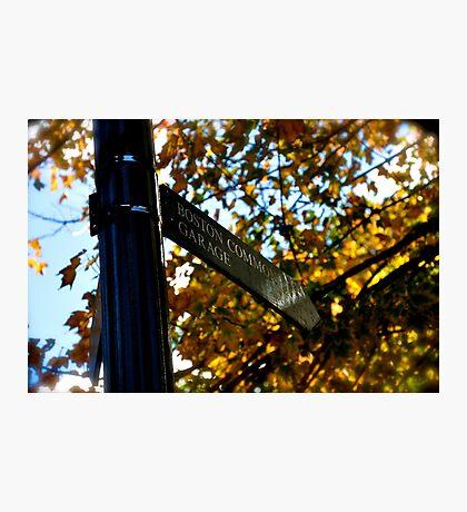 Boston Common Photographic Print
