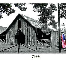 Pride by lynell