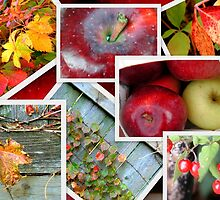 Autumn's Collage of Beauty ©  by Dawn M. Becker