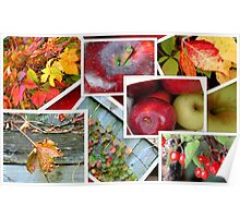 Autumn's Collage of Beauty ©  Poster