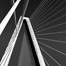 Study in Black and White.. Bridge Perspective by Wendy Mogul