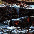 A Watery Fall by EbelArt